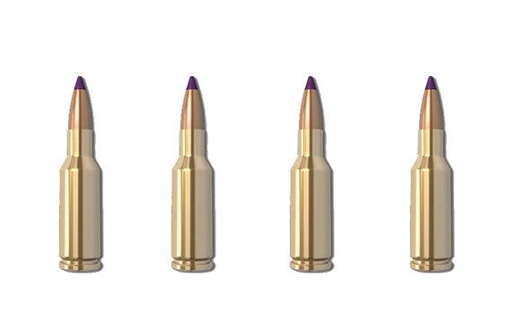nosler 6mm ppc ballistic tip