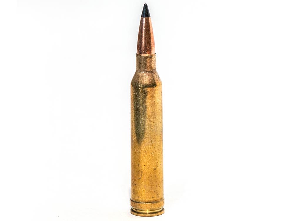 7mm remington magnum ammo cartridge