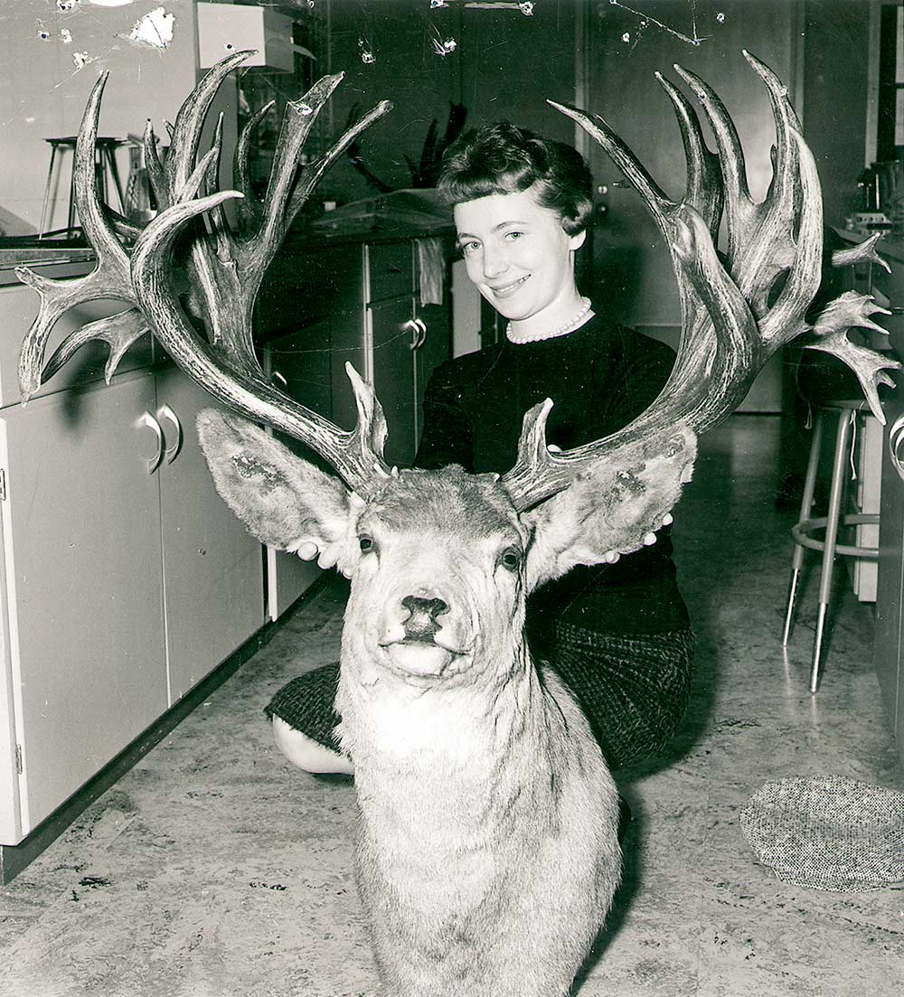 world record nontypical mule deer