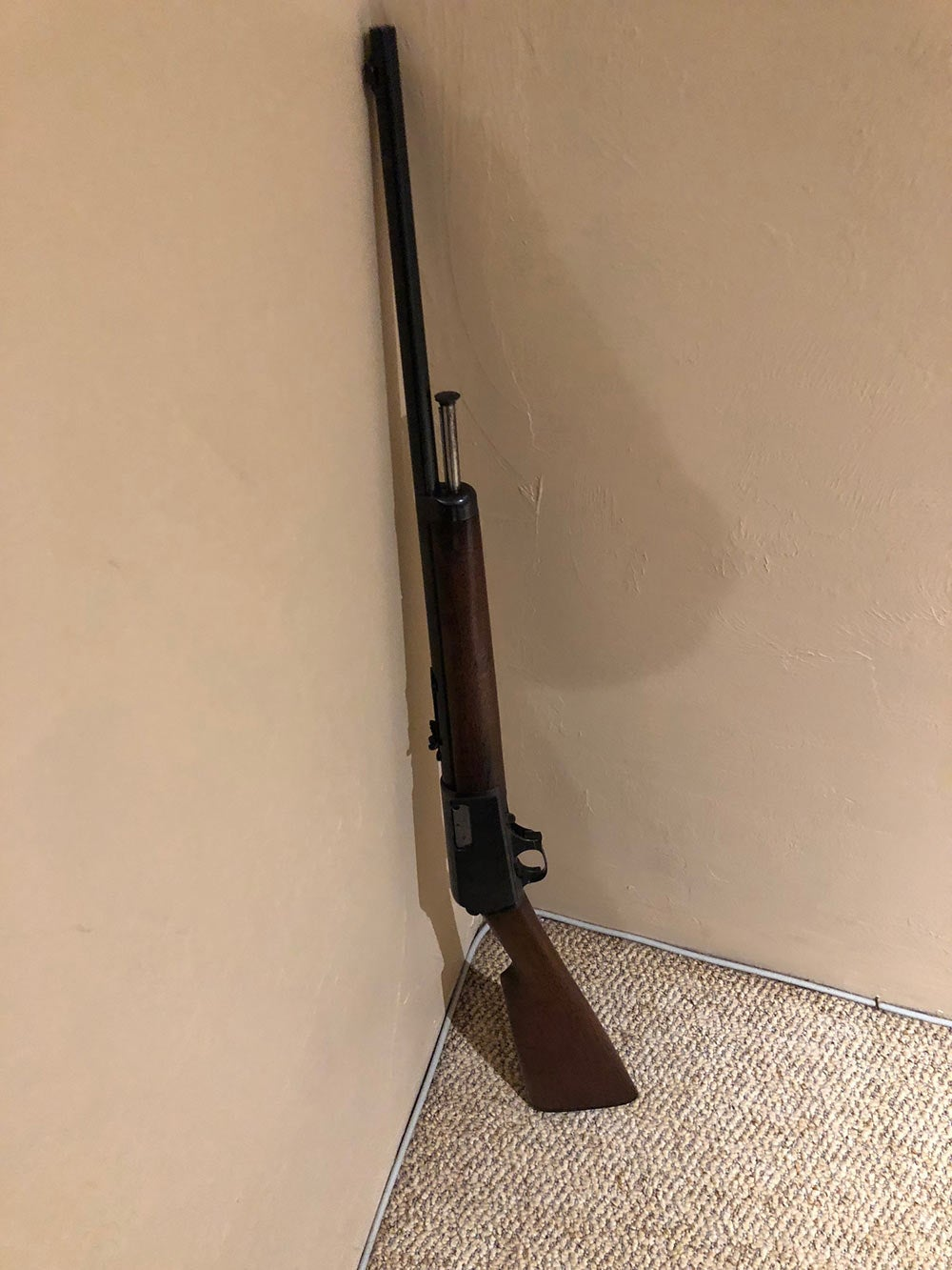 winchester 1905 rifle
