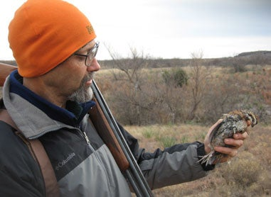 httpswww.fieldandstream.comsitesfieldandstream.comfilesimport2014importImage2009photo23Quail_19.jpg