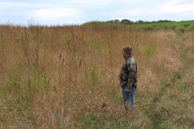 Land Management: After the Burn, Habitat Galore