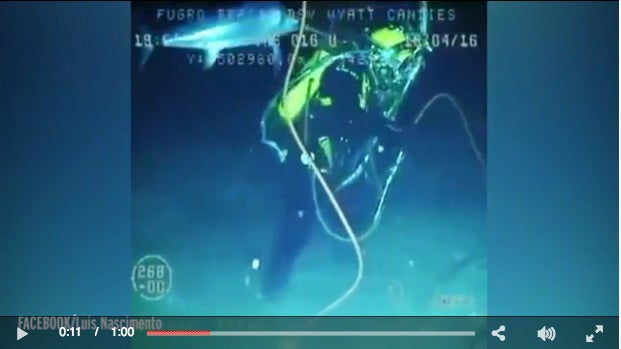 Video: Swordfish Attacks Deep Sea Diver