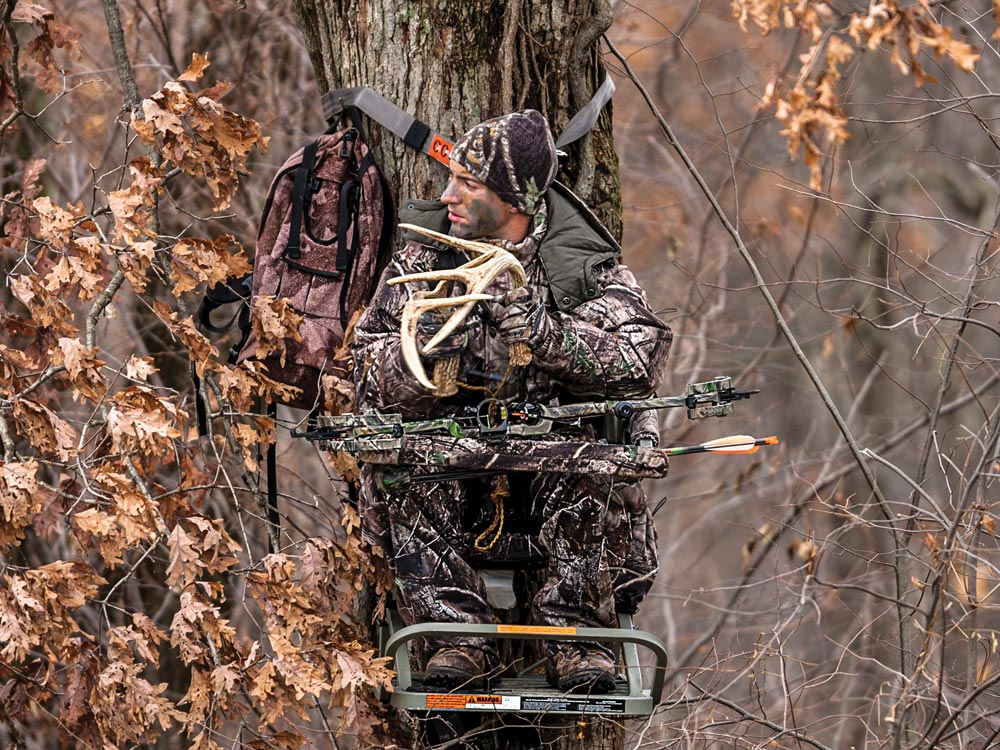 Rattling antlers attracts late rut buck