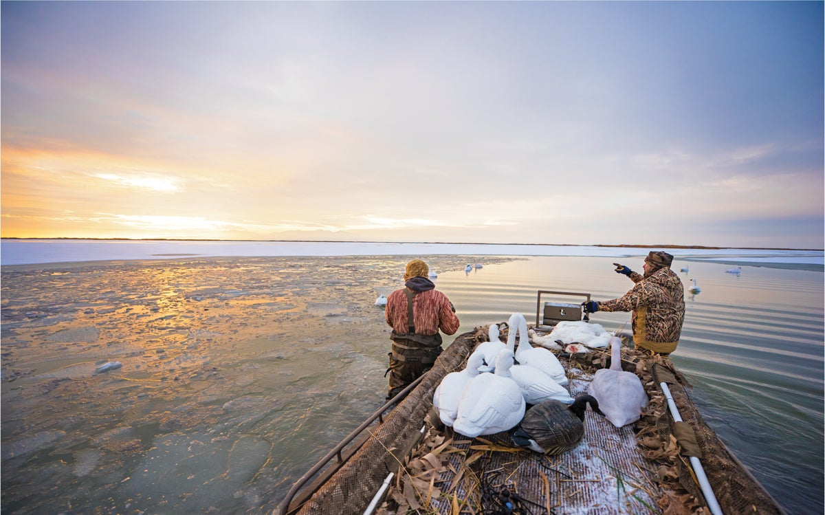 Tundra Swan Song: A Bucket-List Thrill. Just Prepare for a Long, Cold Hunt
