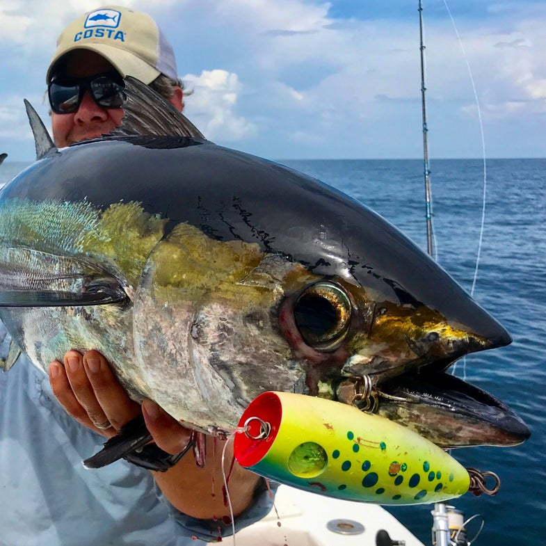 Hook Shots: Louisiana Offshore Odyssey