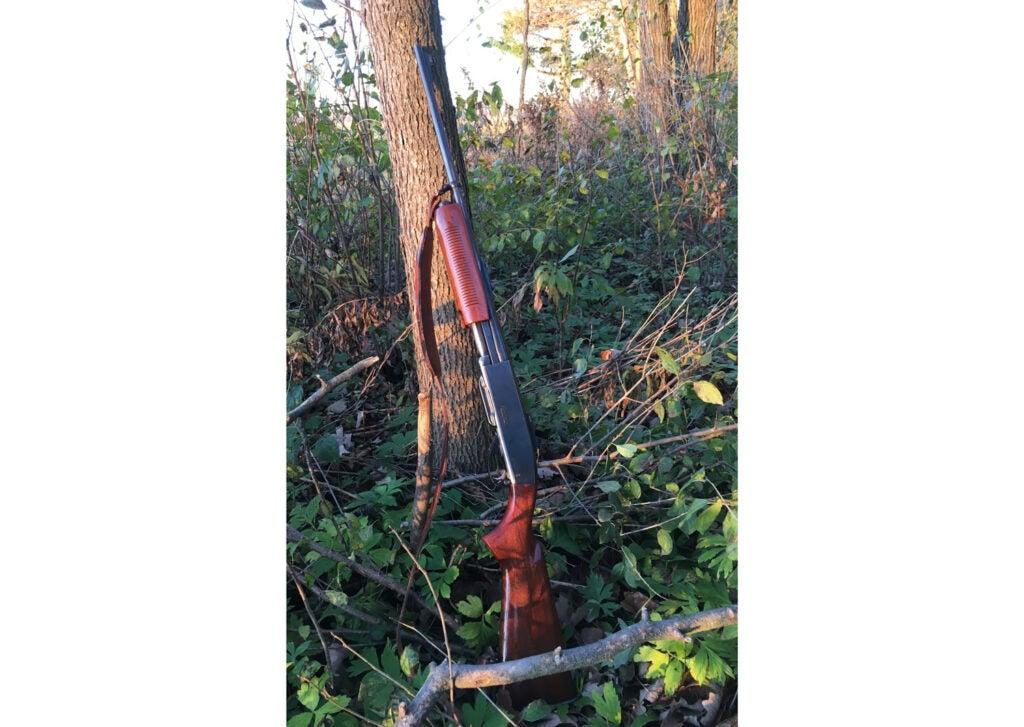Remington 760, .30/06, pump gun
