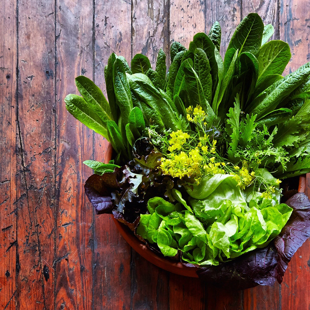 What a Salad Can Tell You About Global Warming