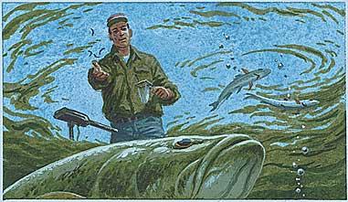 Attract Feeding Gamefish