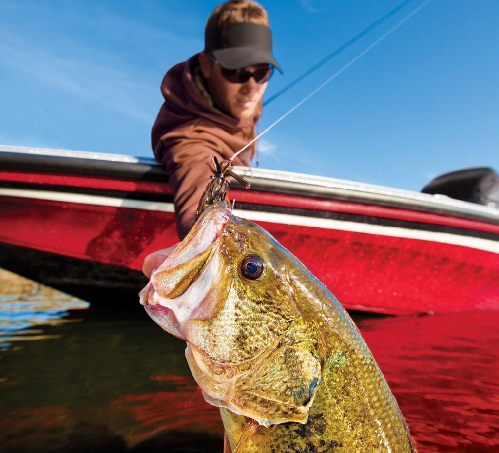 february bass fishing