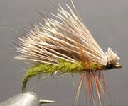 """Step-by-Step Photo Instructions on How to Tie """"Triple Wing Caddis"""" Fly"""