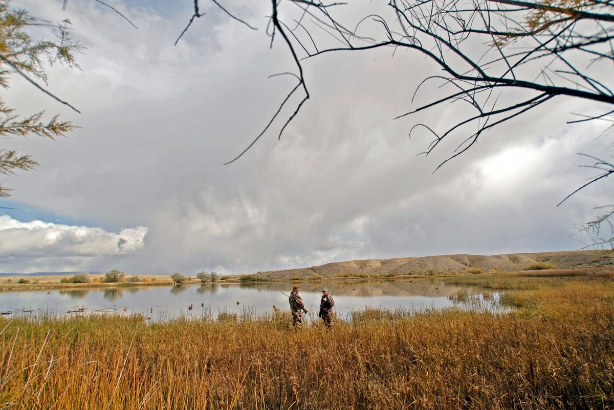 The 3 Rules of Waterfowl Hunting (And What Happens When You Break Them)