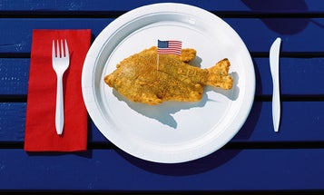 Red, White, and Bluegill