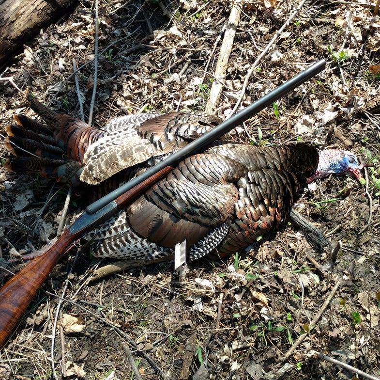turkey-tobin-shotgun