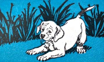 17 Classic Gun Dog Tips From Field & Stream