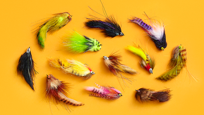 Fishing Streamers for Trophy Trout