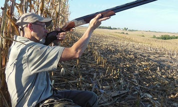 """How to Shoot Incoming Doves…the """"Wrong"""" Way"""
