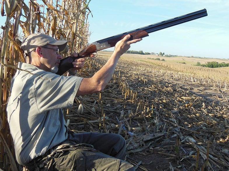 dove hunting with browning shotgun