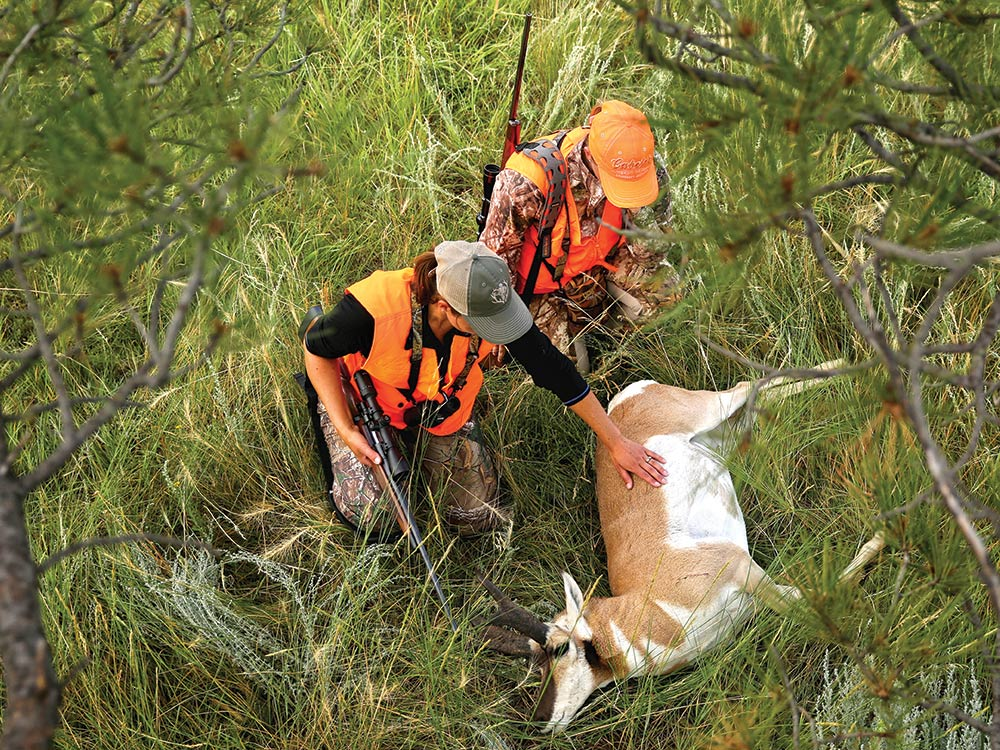 Colorado and Wyoming pronghorn hunting