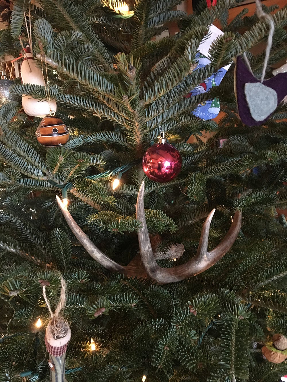Hunting, Deer Hunting, Whitetails, Antler decorations, Dave Hurteau