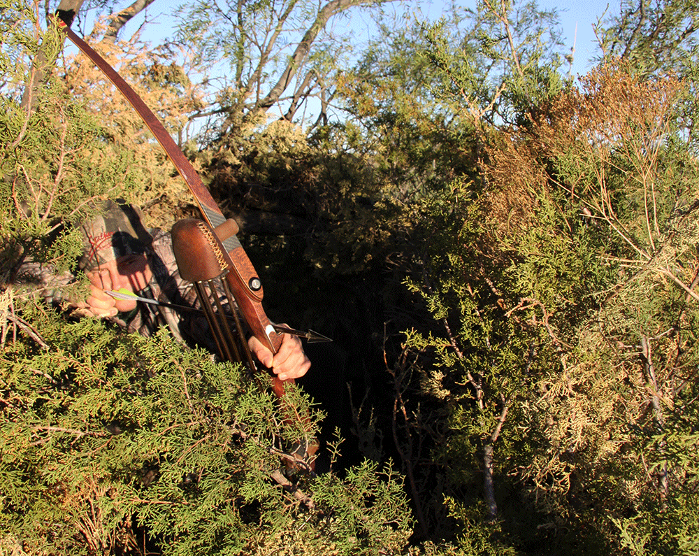 Set Up Your Ground Blind Now to Ambush a Mature Buck at Eye Level