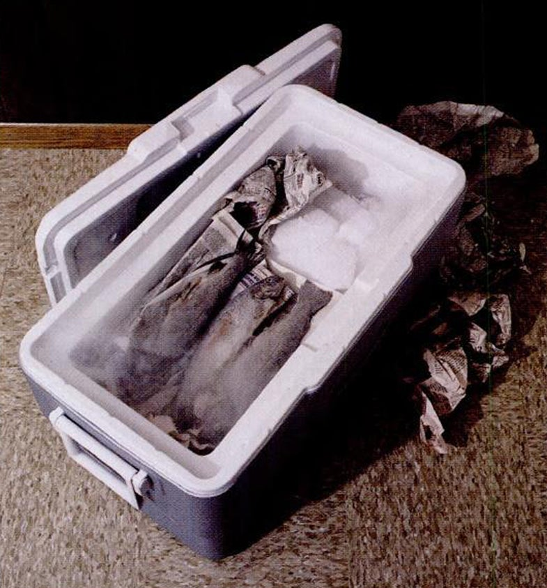 cooler, dry ice, keep dry ice in cooler, coolers, fish, fishing, fish dry ice,