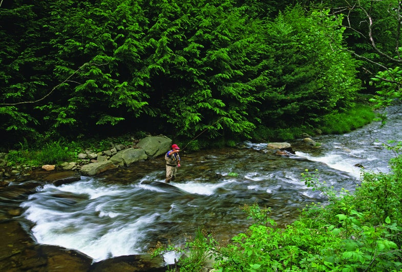 Natural Gas Drilling Threatens Trout in Pennsylvania (and Other Appalachian States)