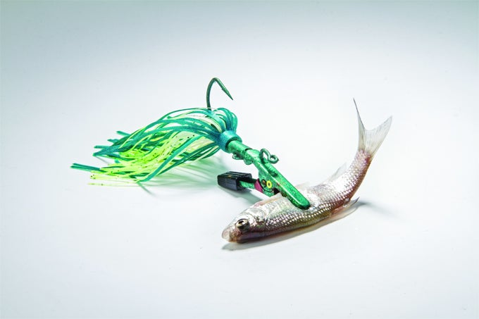 Package Deal: The Story Behind One Reader's Secret Bass Bait