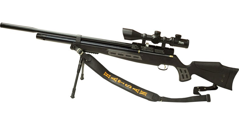 New York Considers Big Game Hunting with Air Rifles