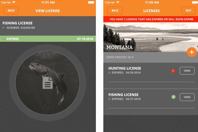 apps, technology, fishing, fish