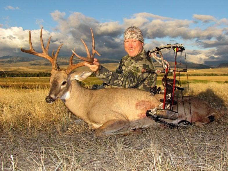 Montana buck