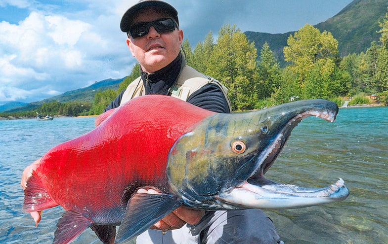 The Latest Pending Records from the IGFA