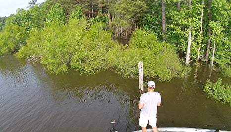 Four Pointers for Scoring Big Bass in the Flooded Jungle
