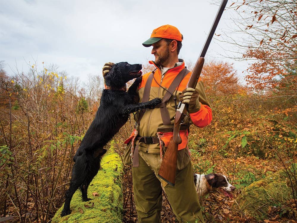 a hunter petting cocker spaniel hunting dog while hunting woodcock