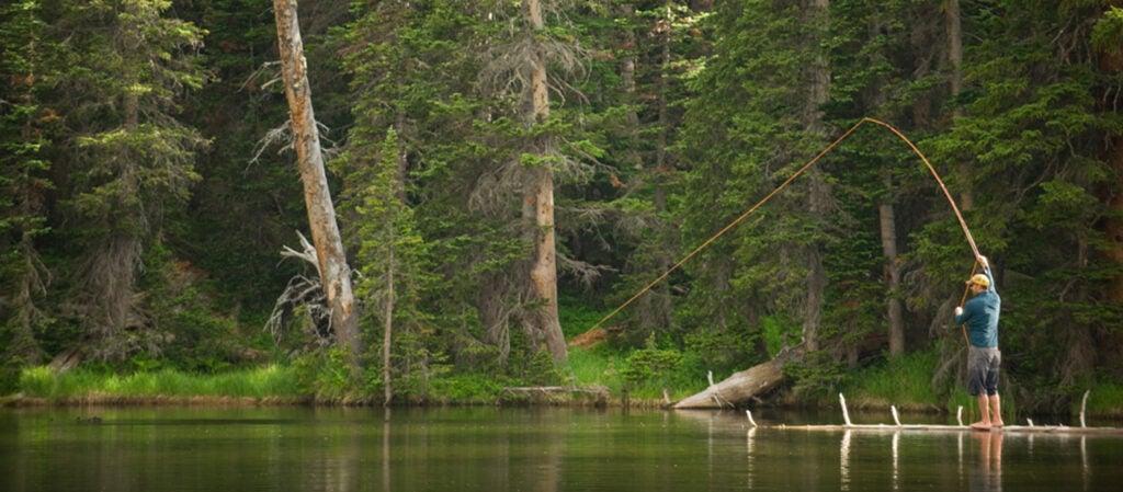 still-water fishing