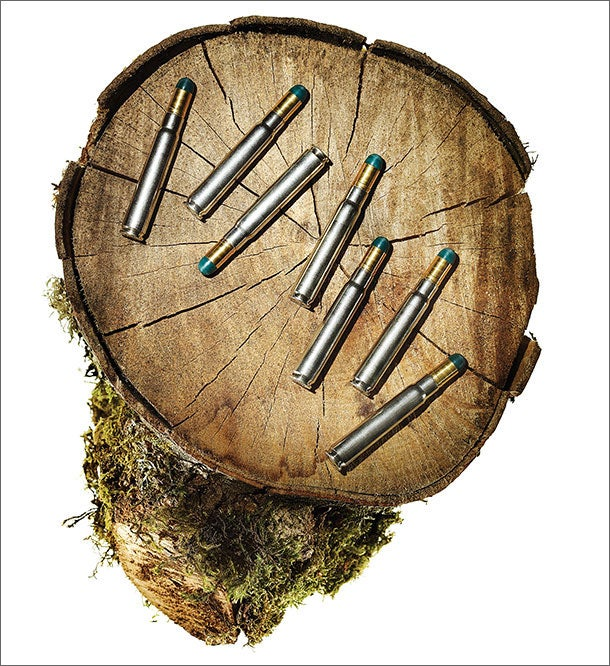 Best Hunting Bullets of 2013: Federal Premium Safari Cape-Shok / Woodleigh Hydro Solid Bullets