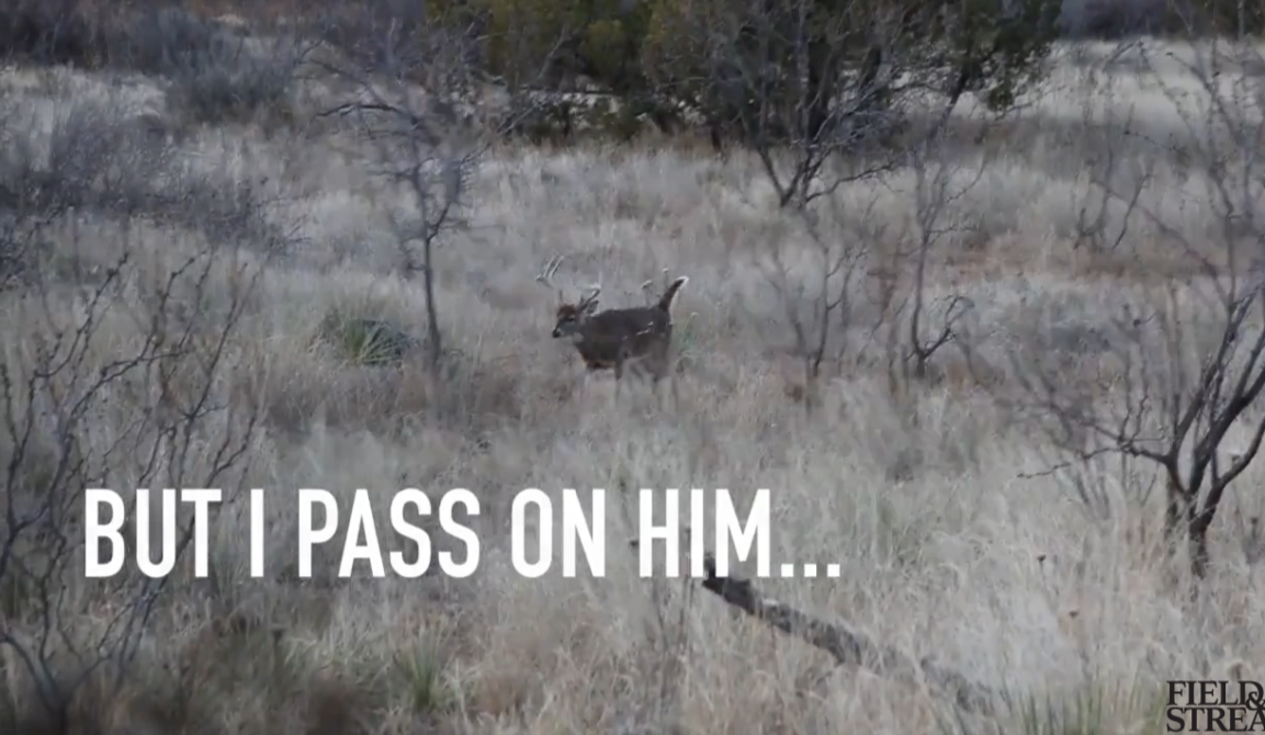 Video: Passing on a 145-Inch Buck, Hoping for a Giant Nontypical
