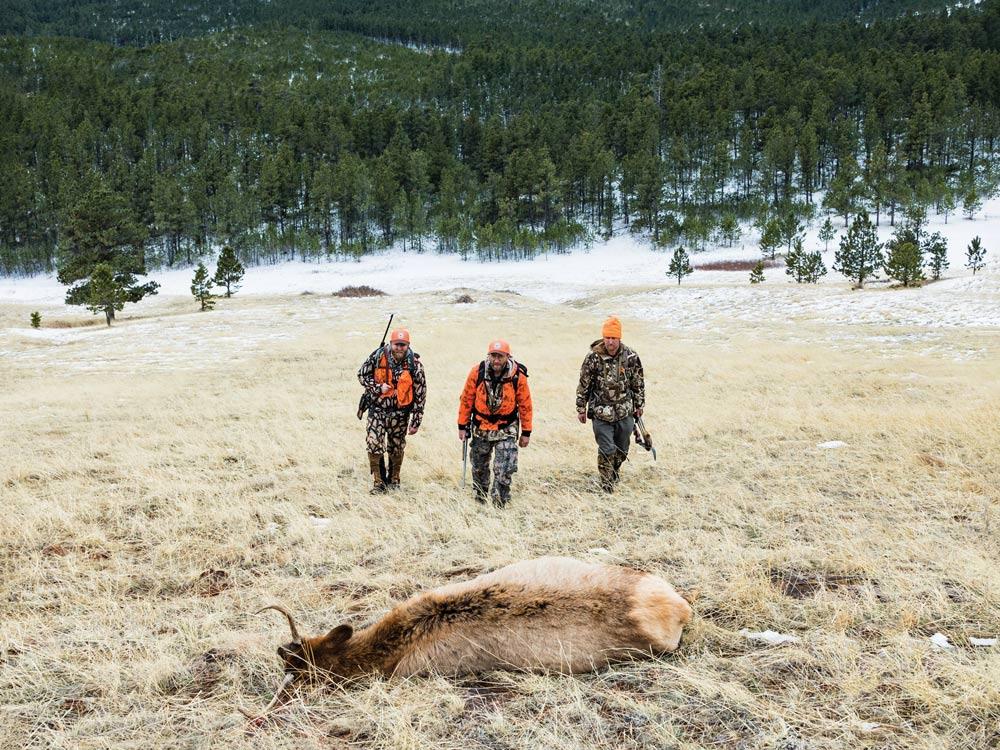 elk hunters in durfee hills