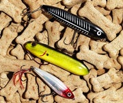 The Encyclopedia of Bait: Today's Best Lures, Rigs and Flies