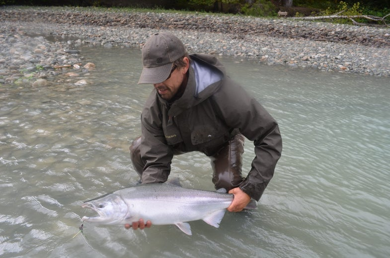Why I'll Take A Silver Over All Other Salmon