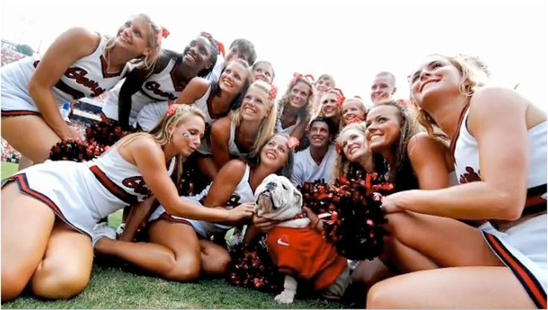 PETA Wants to Banish the University of Georgia Bulldog