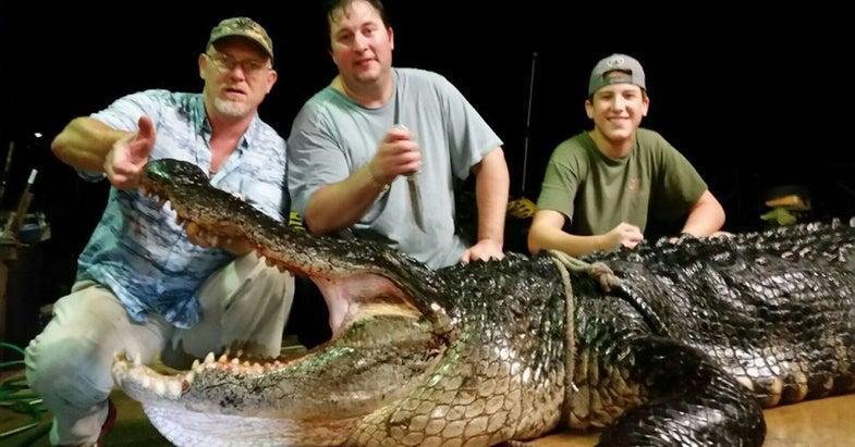 900-Pound Alligator Sets Alabama Lake Record