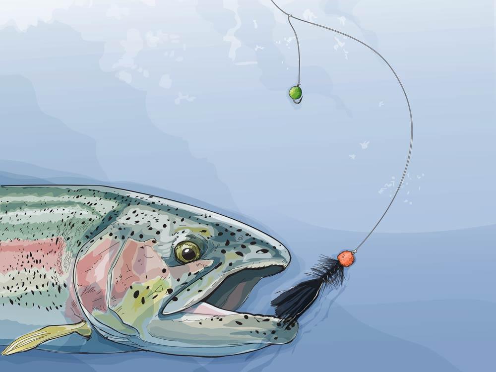 Breakfast Sampler Rig Trout Fishing