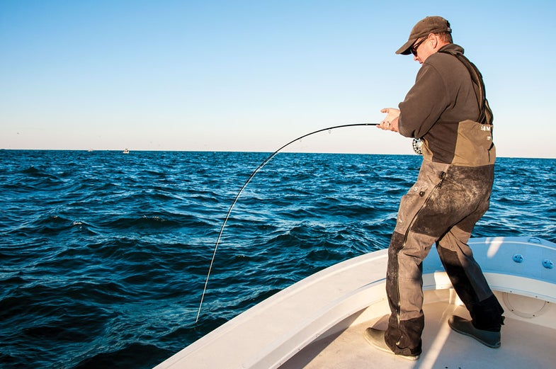 Need a False Albacore Fix? Say Your Prays and Buckle Up