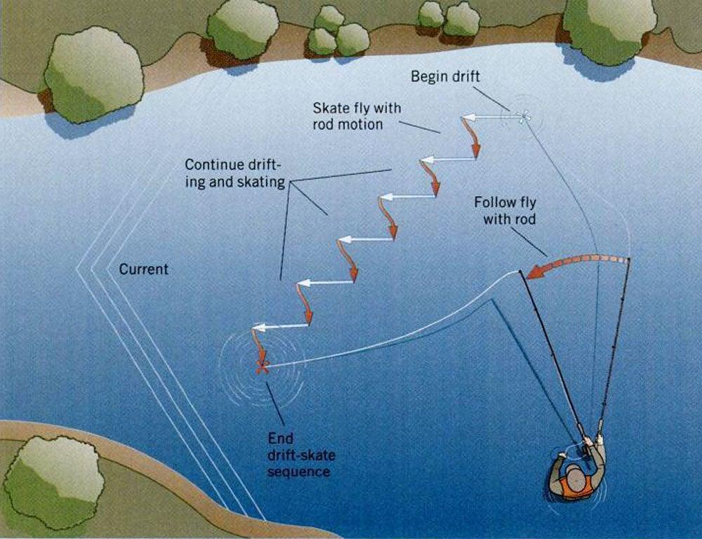 tactics, fishing, 10 tips, trout
