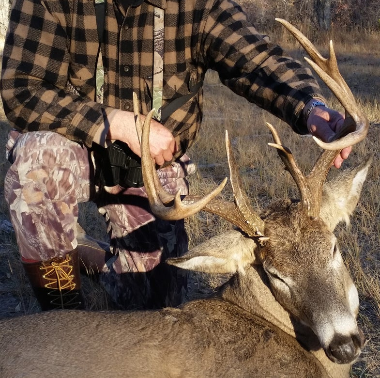 Warm Weather Dampens Activity, But Rut Signs Are Finally on the Rise
