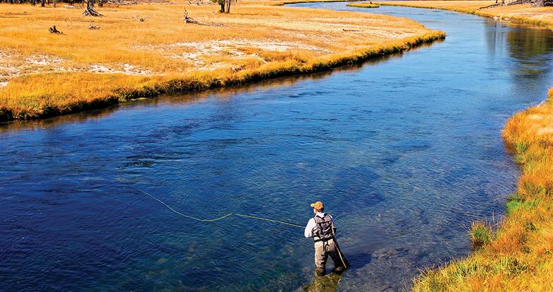 fishing national parks, national park fishing road trip, fishing road trip, fishing Yellowstone