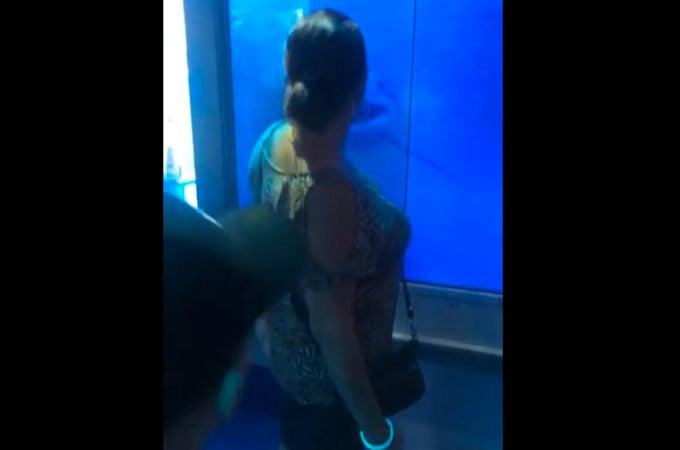 Shark Attack Prank Sends Grandma Flying