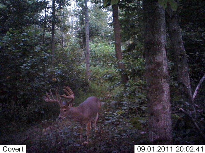 httpswww.fieldandstream.comsitesfieldandstream.comfilesimport2014importImage2011photo62609jt6.JPG