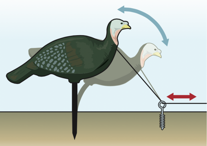 Turkey Hunting Tactic: Make Your Decoy Move